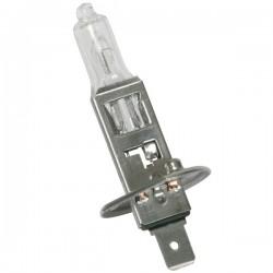 Ampoule H1 Blanc 5000°K + 40%