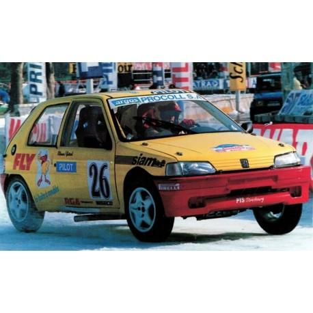 vitre hayon Peugeot 106 phase 1