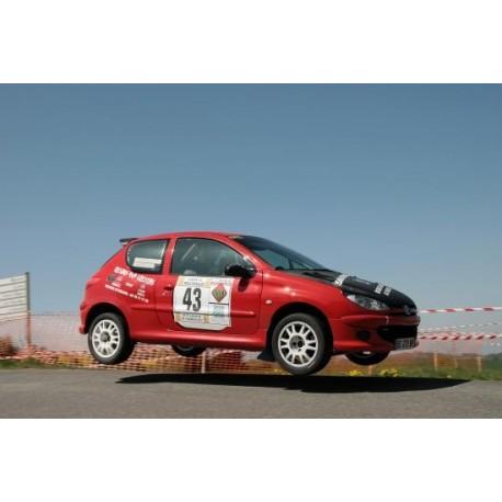 vitre hayon Peugeot 206