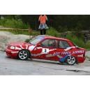 Vitre avant Peugeot 309